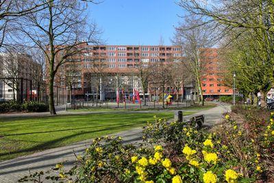 Kipstraat, Rotterdam