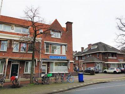 Willem Witsenplein, Den Haag