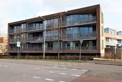 Biesbosch, Duivendrecht