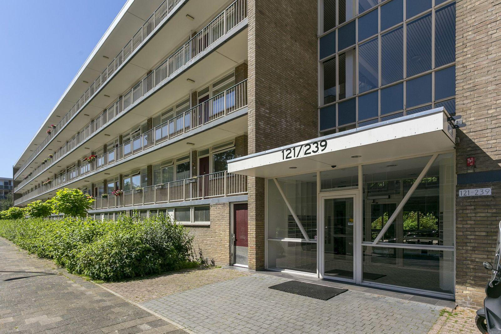 Schalkeroord 185, Rotterdam