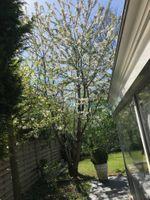 Floralaan 10, Bovensmilde