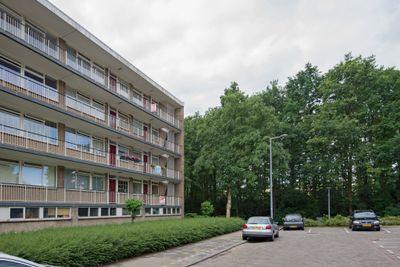 Schalkeroord 167, Rotterdam