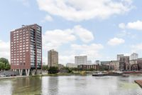 Coolhaven 239, Rotterdam