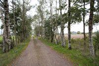 Breetse Peelweg 7, Maasbree