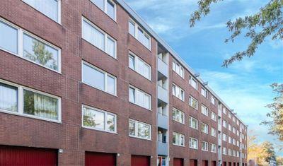 Houdringe, Amsterdam