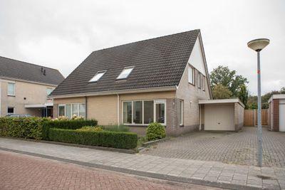 De wiezeboom 7, Steenwijk