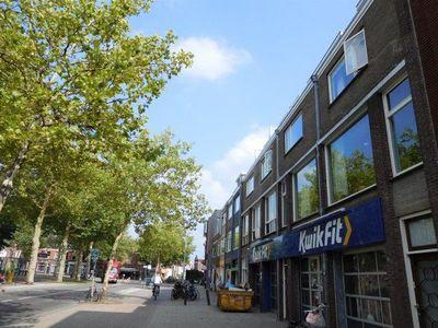Kleinesingel, Utrecht