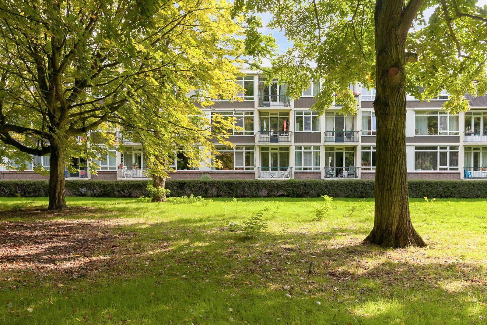 Wijnruitstraat 109, Hoogvliet Rotterdam
