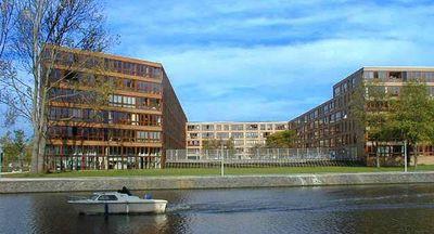 Borneolaan, Amsterdam