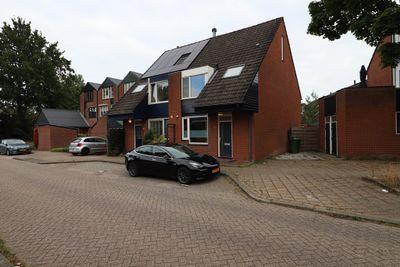 Pijlstaart, Nieuwegein