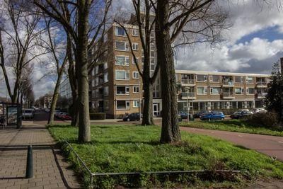 Erasmusplein 169, Den Haag