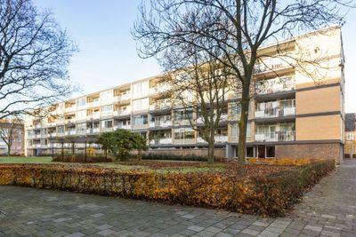 Adriaen Willaertstraat 19, 's-hertogenbosch