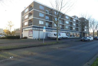 Rooseveltlaan, Bergen op Zoom