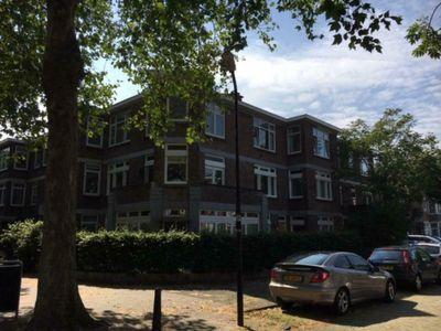 Penninglaan, Rijswijk