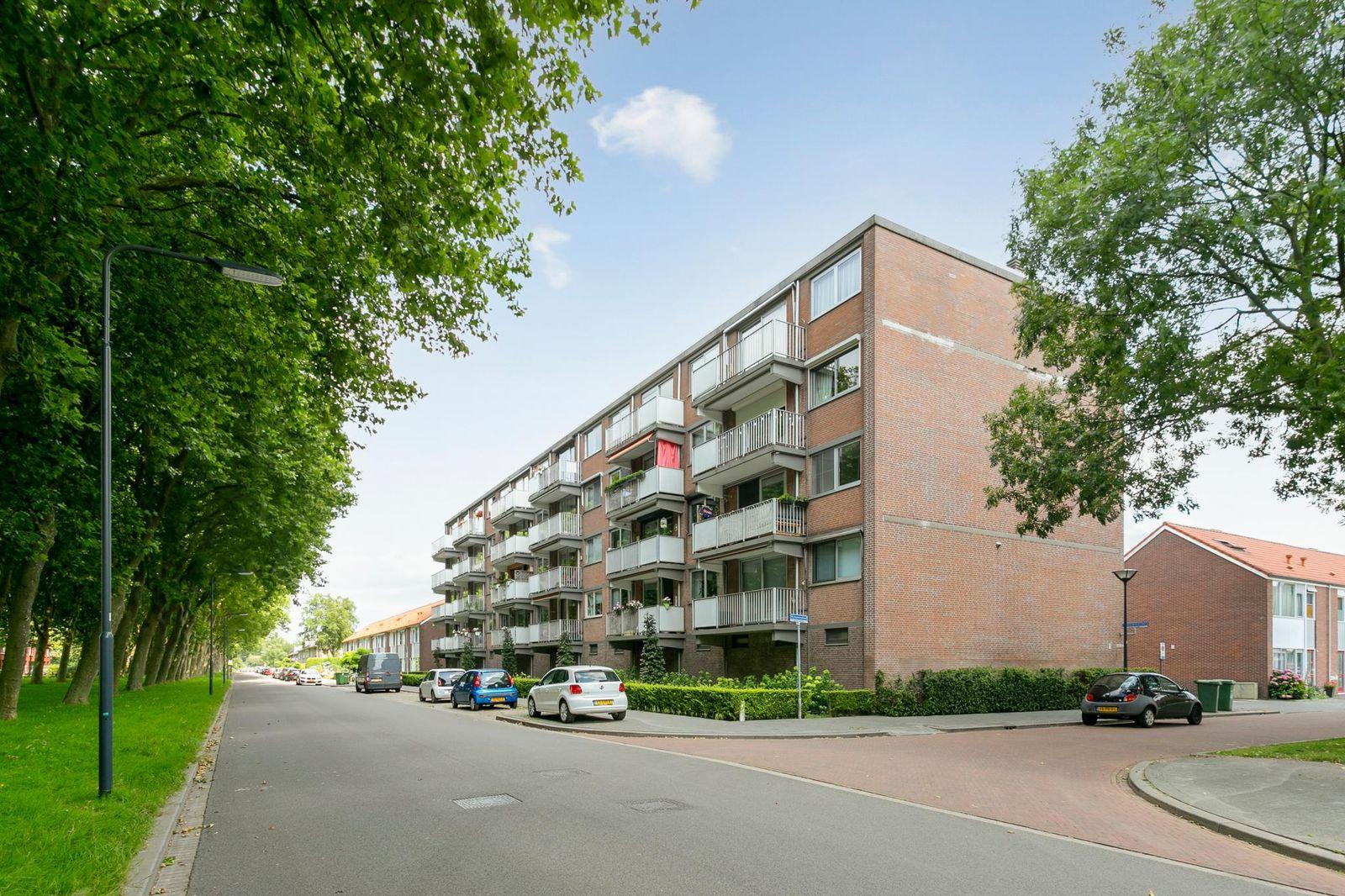 Rijnauwenstraat 53, Breda