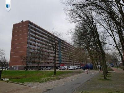 Diederik van Teilingenlaan, Zoetermeer
