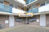 Zandbank, Noordwijk