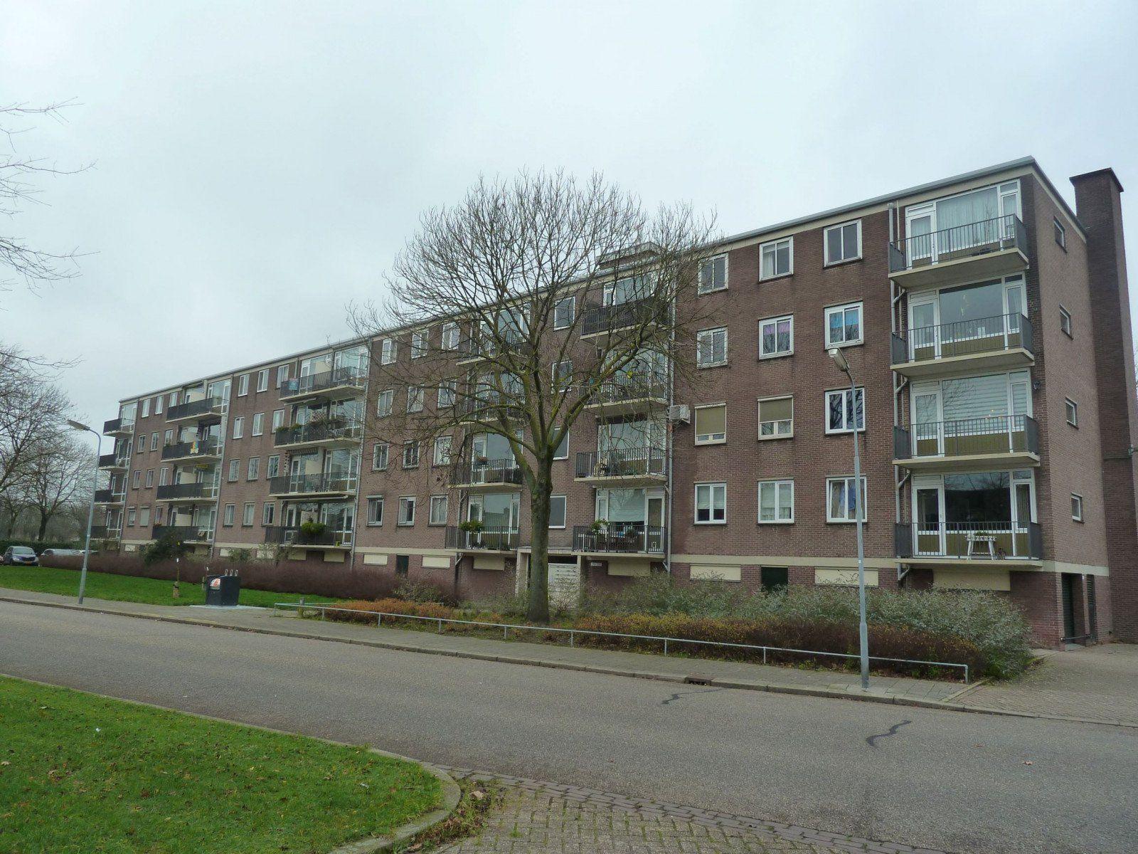 Maassingel, 's-Hertogenbosch
