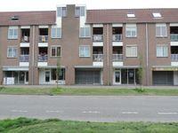 Reiger, Hoorn