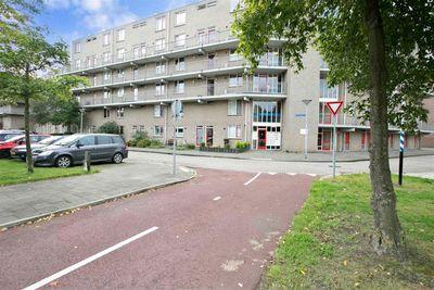 Fivelingo, Utrecht