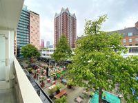 Pannekoekstraat, Rotterdam