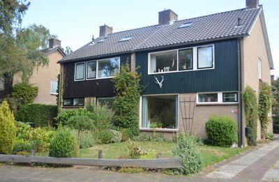 Cornelis Dopperlaan 36, Dieren