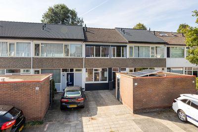 Fivel 43, Zwolle