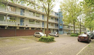 Pijperring, Delft