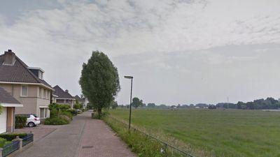 Florijn, Boxtel