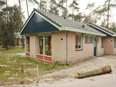 Grevenhout 21-234, Uddel