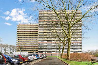 Oost-Dorsch 83, Zaandam