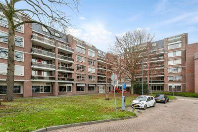 Waterlooplein 509, Oosterhout