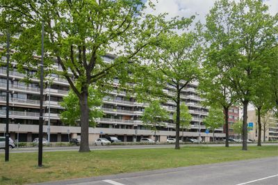 Veldmaarschalk Montgomerylaan 195, Eindhoven