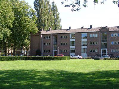 Hertog Hendriksingel, Den Bosch