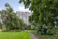 Waddenstraat 485, Haarlem