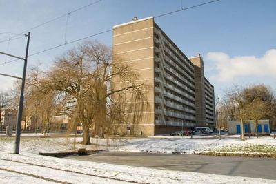 Nieuwe Damlaan, Schiedam