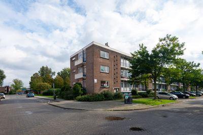 Ellewoutsdijkstraat 146, Rotterdam