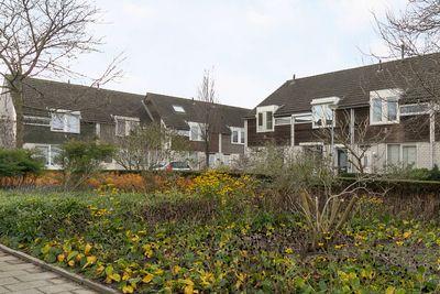 Polakhof 21, 's-hertogenbosch