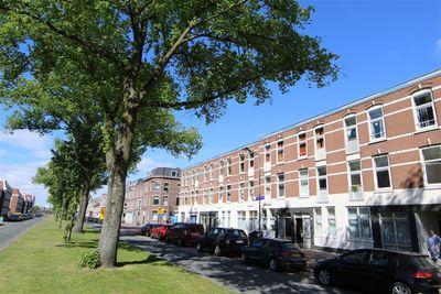 Brede Hilledijk 175C, Rotterdam
