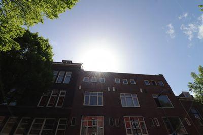 Dahliastraat, Rotterdam