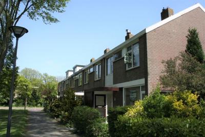 Schaepmanweg, Wassenaar