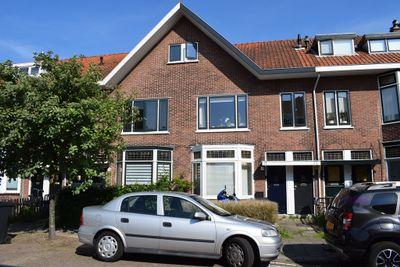 Olmenstraat, Haarlem