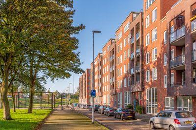 Piet Paaltjensplein 79, Rotterdam