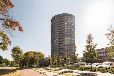 Ds Theodor Fliednerstraat 243, Eindhoven