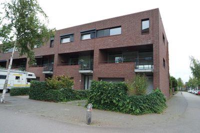 Zandbloem, Eindhoven
