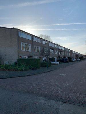 Cypressenlaan, Sint-Michielsgestel