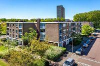 Van der Haertstraat, Delft