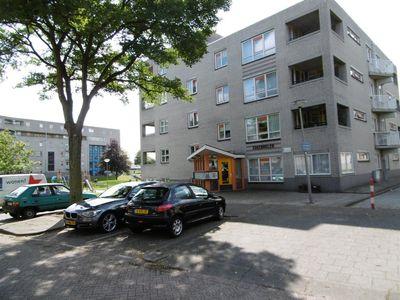 Gekroonde Haringpad 20-2E, Rotterdam