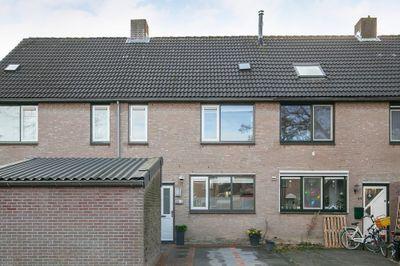 Friese Steen 46, Wijk bij Duurstede