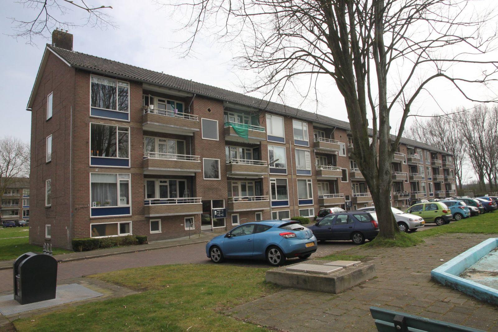Tulpenstraat 3, Hoogeveen